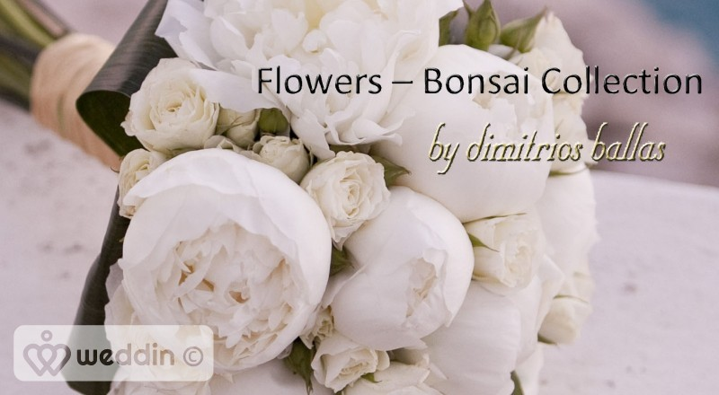 Flowers Bonsai Collection by Dimitris Ballas